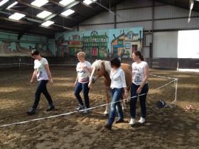 teamwork in de paardenbak